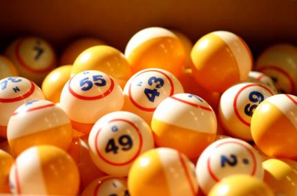 bingo-online-o